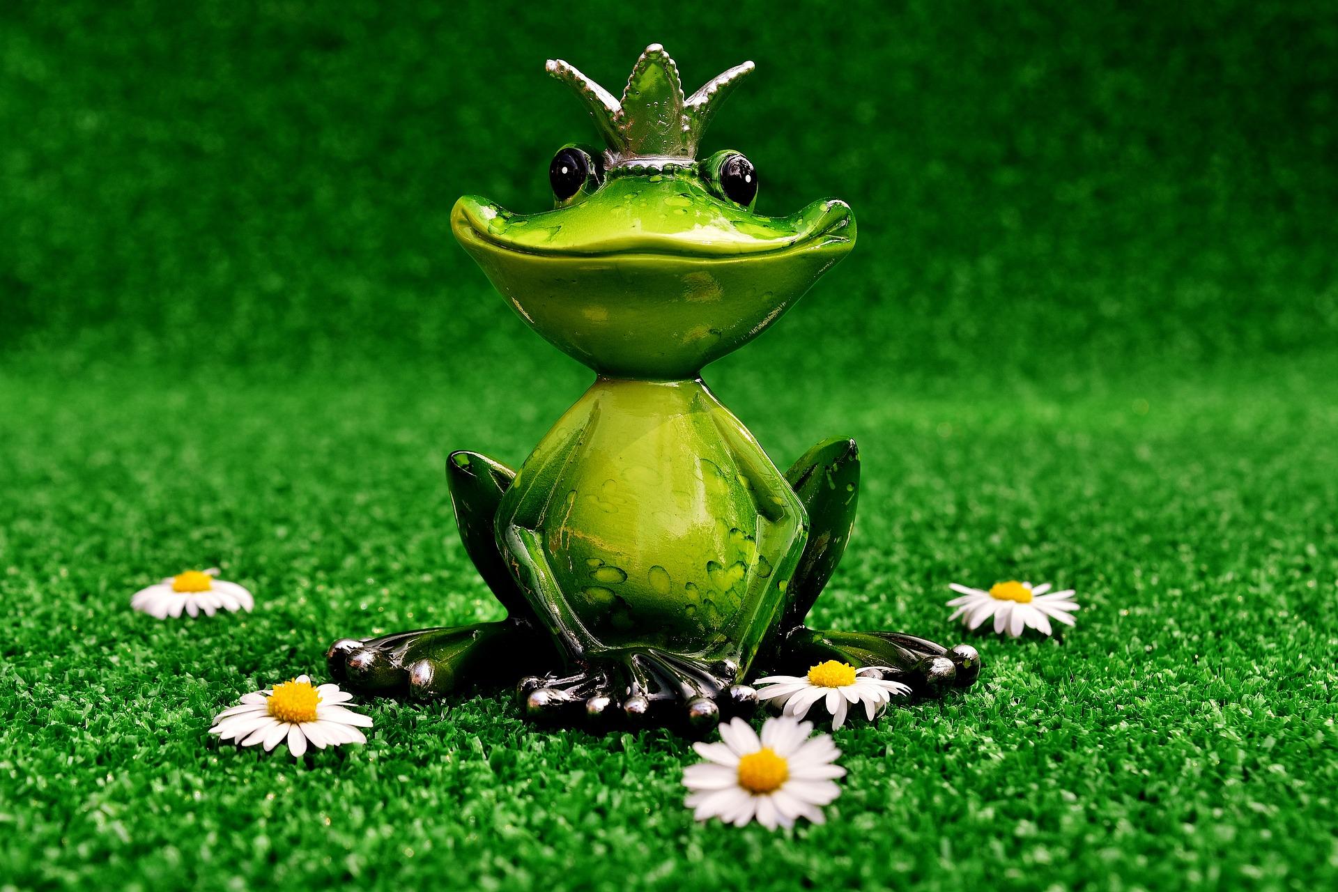 kindertheater der froschkönig  mylede