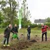 Baumpflanzung als Auftakt für mehr Grün in unserer Stadt