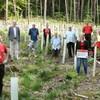 Echterdinger Firma Matter spendet 600 Bäume für den Echterdinger Wald