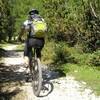 Mountainbike-Trails im Stettener Wald