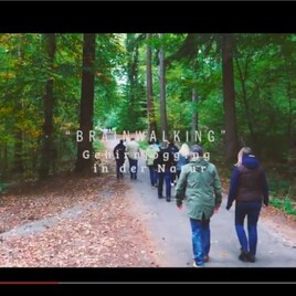 Brainwalking - Gehirnjogging in der Natur