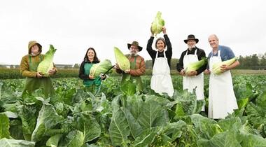 Gemäßigte Temperaturen bescheren den Bauern in LE eine tolle Krauternte