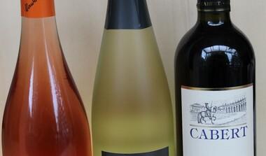 vom Urlaub zurück Weinprobe Italien, Frankreich und Württemberg