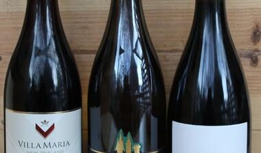 Einladung zur Weinprobe - AKTION - -Frankreich - Baden - Neuseeland