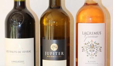 Weinprobe Frankreich, Spanien und Württemberg