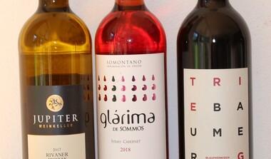 Einladung zur Weinprobe Württemberg, Spanien und Österreich