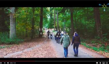 Brainwalking - Gehirnjogging in der Natur