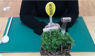 KreativTeam: Einfache Beschriftungsvorschläge für Ihren Kräutergarten