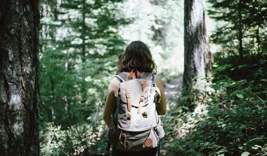 Mit anderen Wandern - machen Sie bei den DVV-Wandermöglichkeiten mit