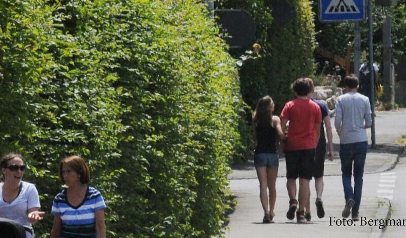 Für die Verkehrssicherheit: Grünzeug an Straßen und Wegen zurückschneiden