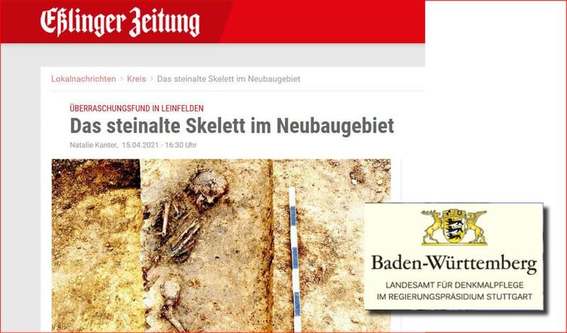 Überraschungsfund in Leinfelden: Das steinalte Skelett im Neubaugebiet