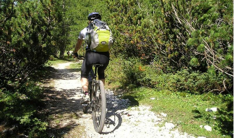 Mountainbike-Trails im Stettener Wald - MTB